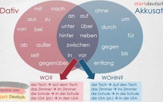 Немецкие предлоги. интересная сказка о предлогах немецкого языка!