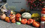 Осень в германии. немецкие праздники, отмечаемые осенью.
