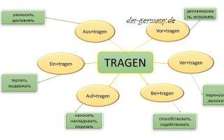 Немецкий глагол tragen и его многочисленные трансформации