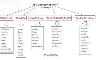 Глагол gehen имеет целый ряд синонимов в немецком языке.