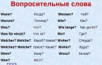 Вопросительные слова в немецком языке: виды и примеры