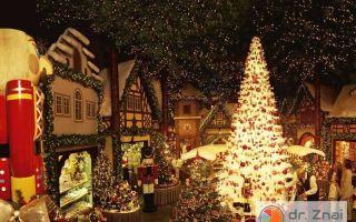 Праздник к нам приходит: что едят немцы на рождество?
