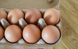 Яйца в германии. сколько яиц съедают жители германии.